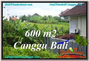 Exotic PROPERTY LAND SALE IN Canggu Brawa BALI TJCG206