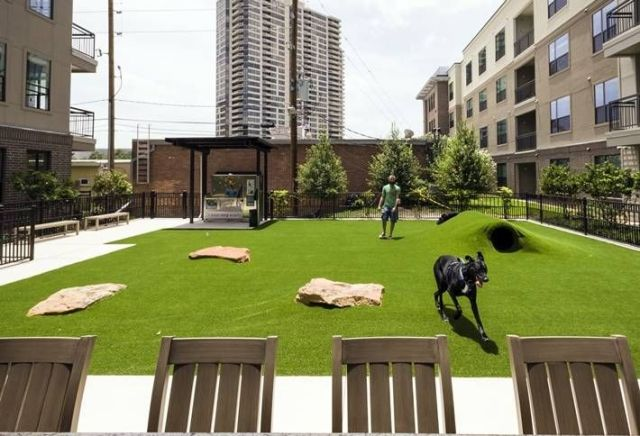 apartment community amenities dog parks