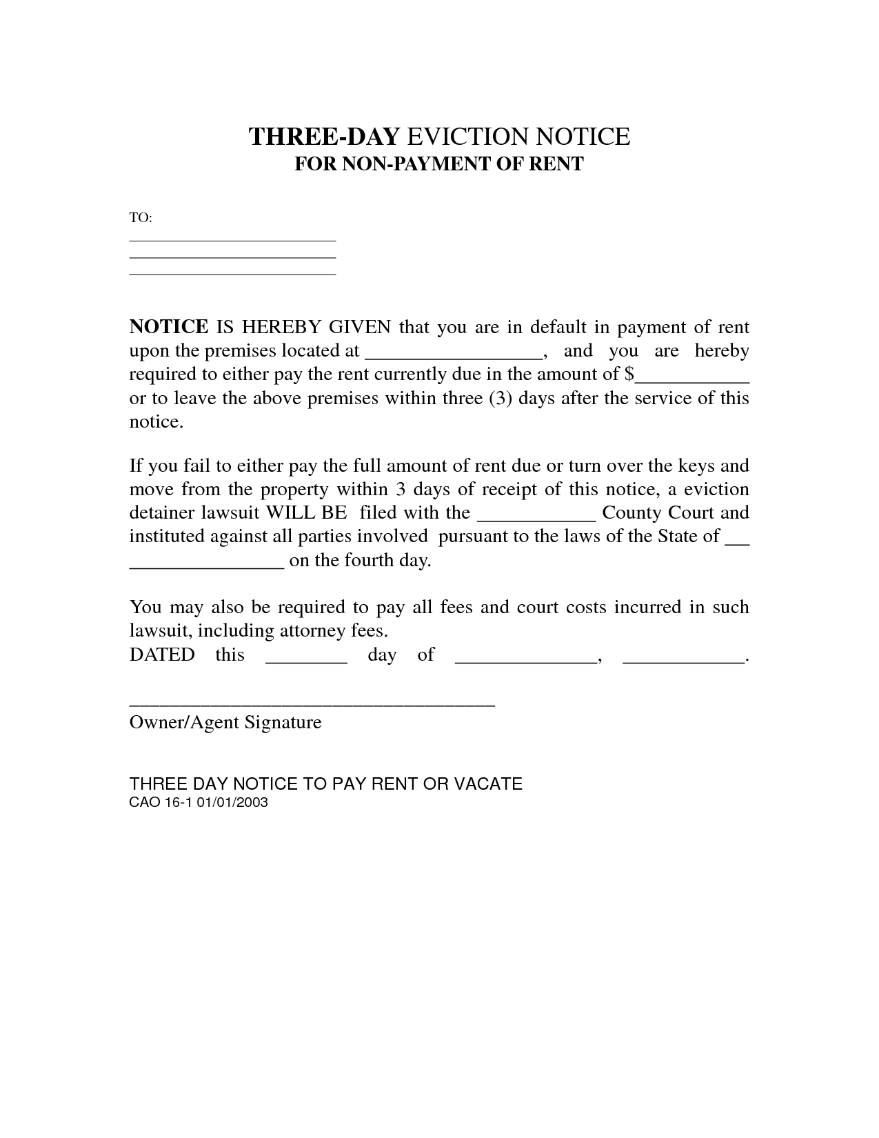 3 Day Notice Template. florida florida eviction form and. property ...