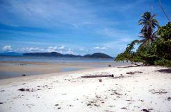 10 x 1 Rai blocks of land nearby beach for sale in Laem Sor