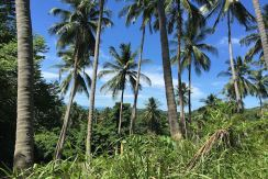 Large 2 title land plot for sale, Taling Ngam, Samui