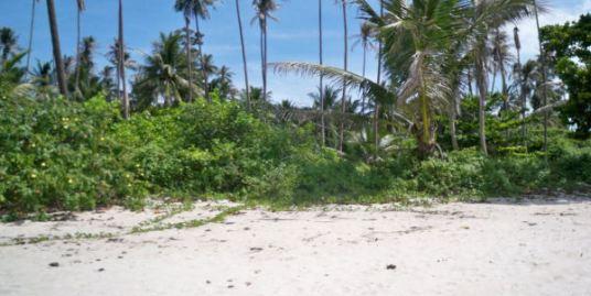 1 Rai Beach front land Laem Sor Koh Samui