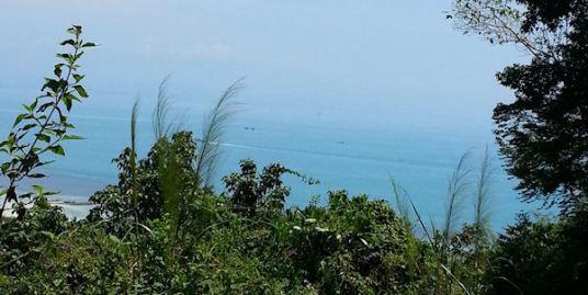 Bang Por Sea View 1 Rai, Koh Samui