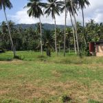 Land plots in established central location in Lamai, Koh Samui