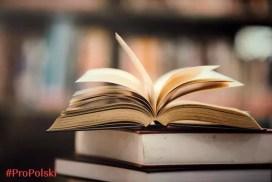 Словарь фразеологизмов польского языка ProPolski часть 1