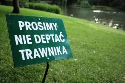 Prosimy nie deptać trawnika