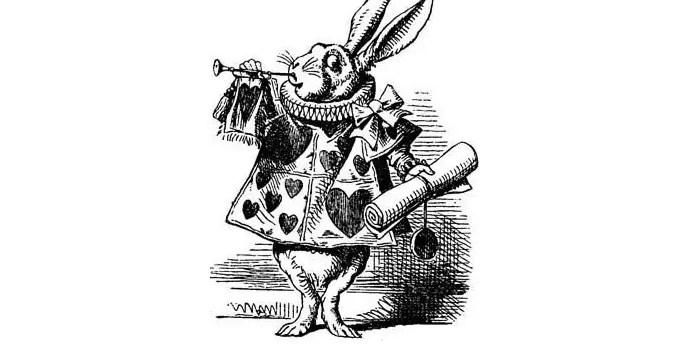 Алиса в стране чудес на польском языке, чтение 11 главы + разбор