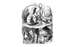 Алиса в стране чудес на польском языке, чтение5 главы + разбор
