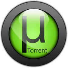 what does utorrent pro do