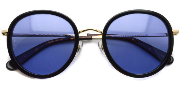 WONDERLAND / MONTCLAIR / Dark Tortoise - Blue  / ¥26,000 +tax