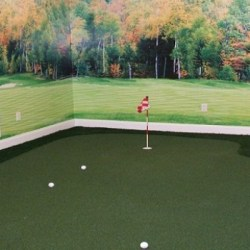 Custom-Indoor-Golf-Greens-resized-image-560x350