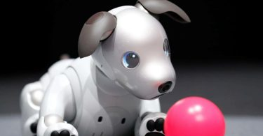 Pros and Cons of Sony AIBO Robot Dog