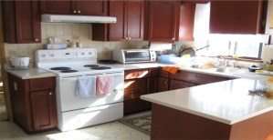 Pros and Cons of U-Shaped kitchen
