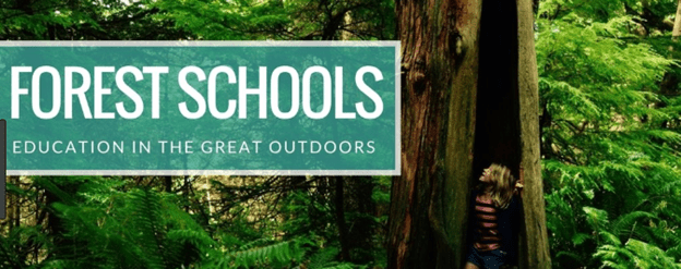 You are currently viewing Pros and cons of forest schools