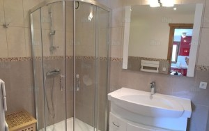 Pros and Cons of Having Door less Shower on your Home