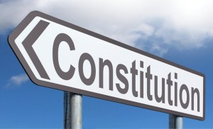 Pros and cons of constitution