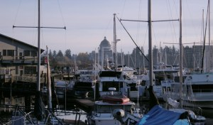 Pros and cons of living in Olympia WA
