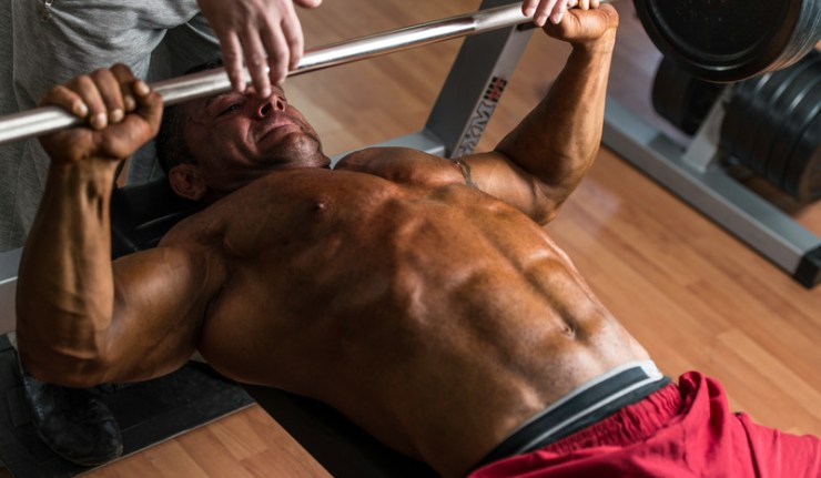 Dianabol Gains, Effects and Results on the Body