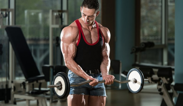 Image result for Great Results Obtained by Few Stacks Using with Tribulus