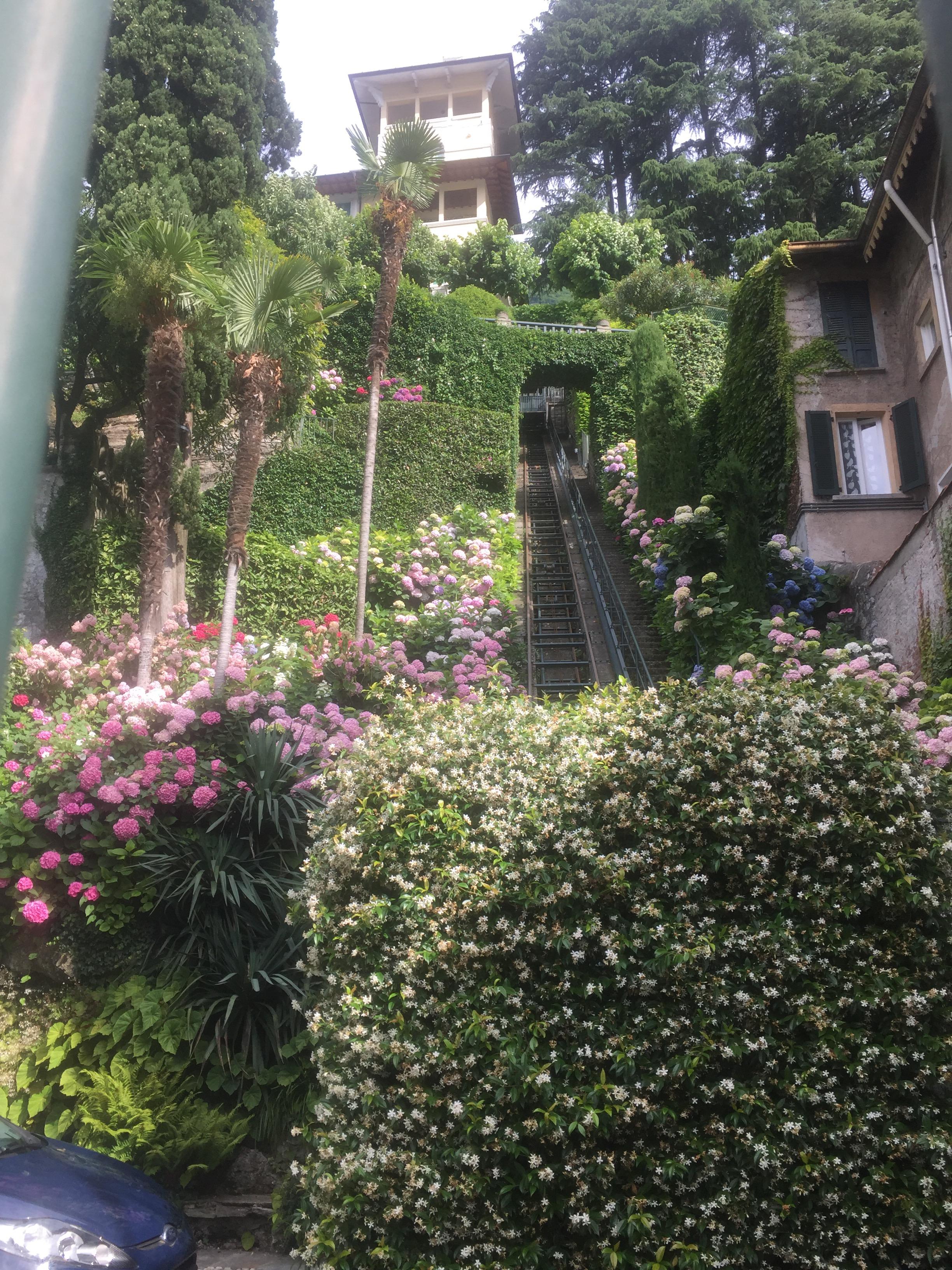 Lake Como 101 – prosecco & palmtrees