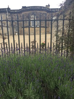 Prosecco and Pie visits Seaton Deleval Hall National Trust July 2015 (34)