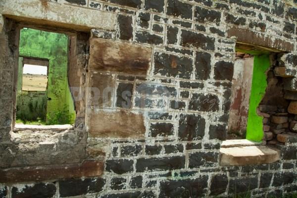 Green farmhouse ruin | ProSelect-images