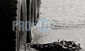 Jetty Cape Agulhas | ProSelect-images