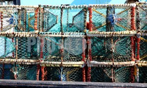 Lobster traps Hout Bay | ProSelect-images