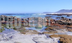 Tide pool Western Cape | ProSelect-images