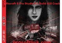 prosoftlink.com