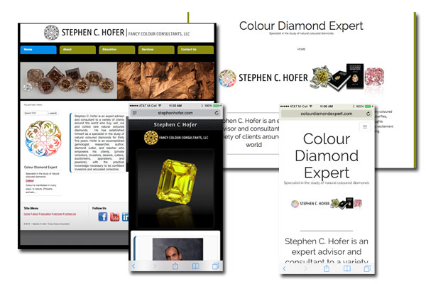 Web Development, SEO, Blog, Mobile and Tablet enabled