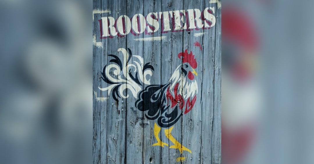 Roosters Milcha Sanchez-Scott