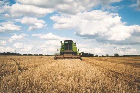 combine-harvesting