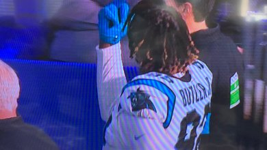 Photo of Watch: Panthers' Vernon Butler Ejected For Punching Colts' Jack Doyle; Gives the Crowd 'The Bird' Afterwards