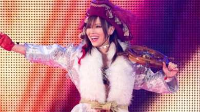 Photo of Kairi Sane to Join Japanese Commentary Team for Hell in a Cell