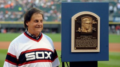 "Photo of Tony La Russa Told The Cop That Pulled Him Over That He Should Be Respected Because ""I'm a Hall of Famer, Brother"""