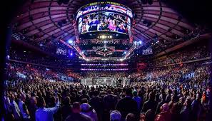 Photo of UFC to Have Fans for January Fight Island Events