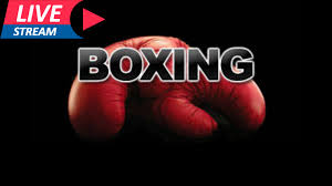 Photo of Boxing: Felix Alvarado vs. DeeJay Kriel Live Stream