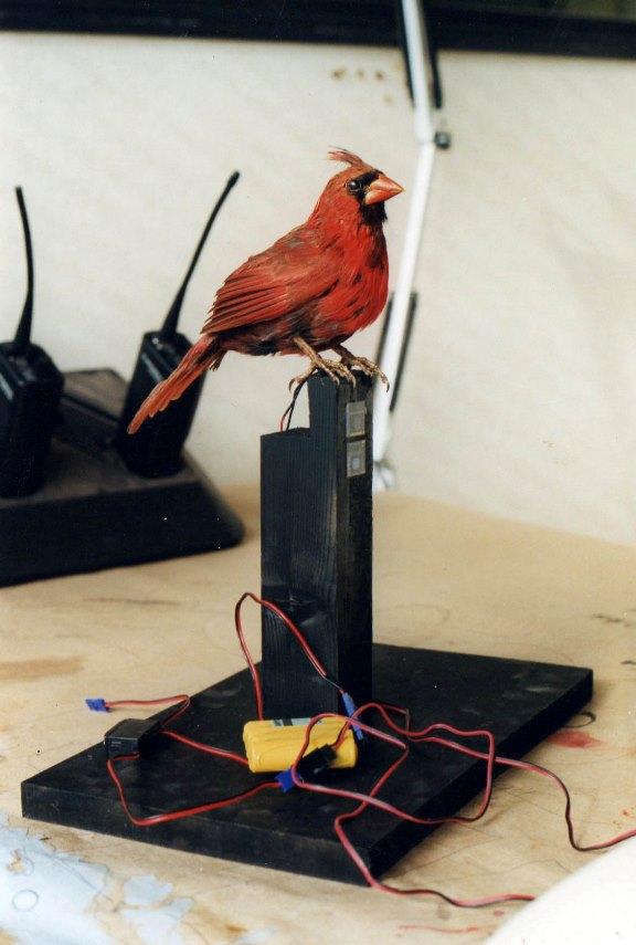 Fake bird