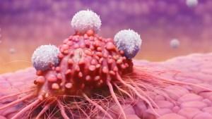 Раковые клетки погибают, когда Вы едите эти 7 продуктов! Вы должны немедленно начать употреблять их!