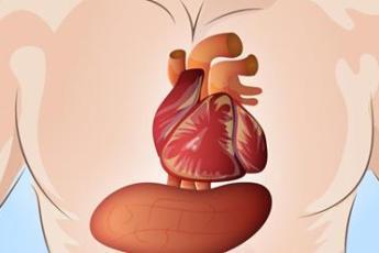 За месяц до сердечного приступа наше тело начинает подавать сигналы. Их нельзя игнорировать
