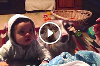 Она учила малыша говорить «мама». Но ты только посмотри на реакцию собаки!