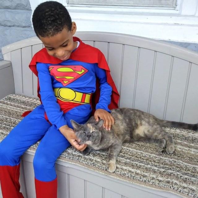 5-летний мальчик помогает спасать бездомных котят и является их супергероем…