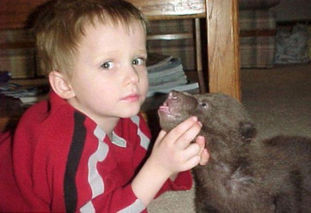Этот парень нашел двух медвежат возле умершей матери. Произошедшее потом не передать словами… (13 фото)