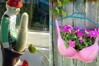 Каждый садовник в душе креативщик (10 фото)