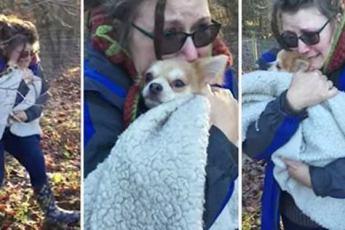 После 2-дневного поиска в морозном лесу хозяйка не может перестать плакать, когда снова видит свою собаку