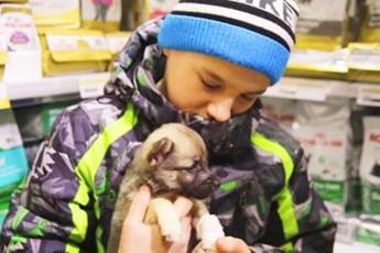Мальчик хотел купить щенка, который хромал и продавец насмехался над ним. Но через минуту он очень пожалел об этом…