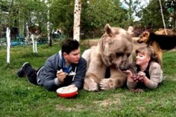 Уже 20 лет медведь живёт в обычной семье. Только посмотрите что он вытворяет!