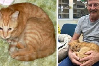 14 лет мужчина думал, что его кот погиб, но вдруг раздался звонок, который перевернул всю жизнь!