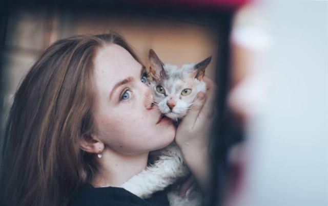 «Мы не знали о том, что нас ждёт!» Они случайно принесли домой дочь сфинкса и домашней кошки